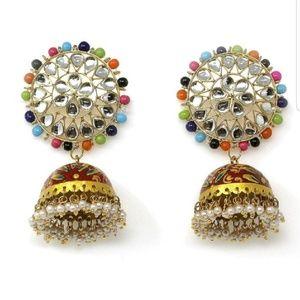 Handmade Hand Painted & Enamel Jhumki Earrings